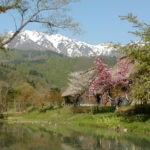 Murase Tadamasa House in Spring