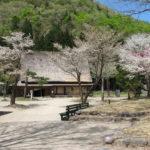 Nakano Chojiro House in Spring